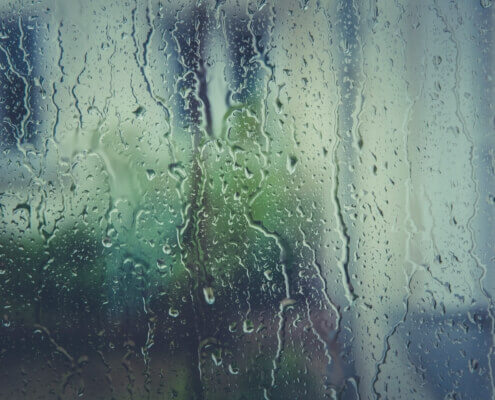 Schimmel durch Wasser vermeiden: Tipps von der Hausverwaltung